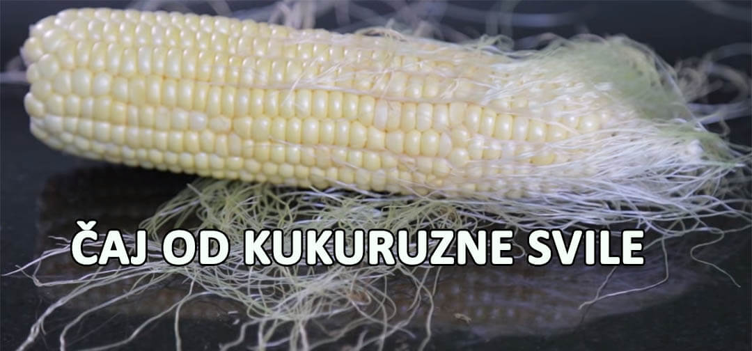 kukuruzna svila slika