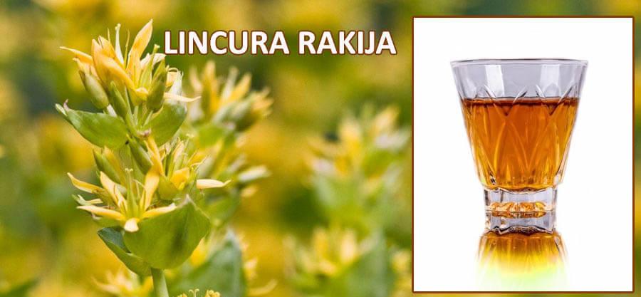 recept za rakiju od lincure
