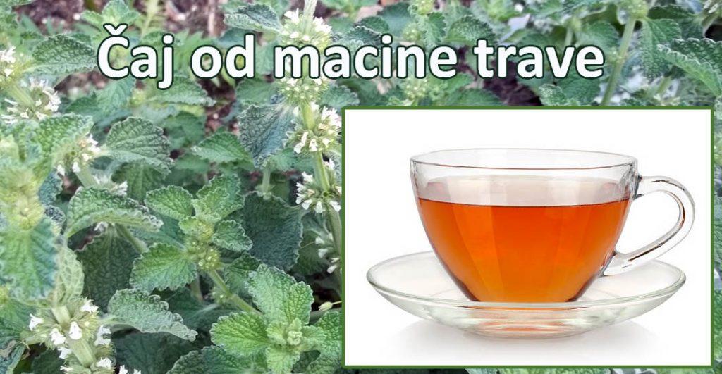 čaj od macine trave